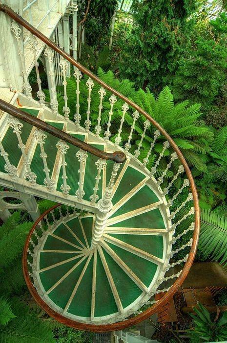 лестница зеленая