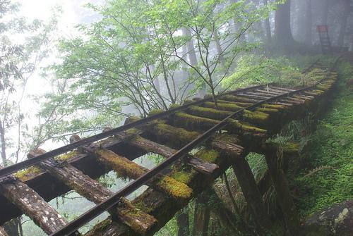 был мостик
