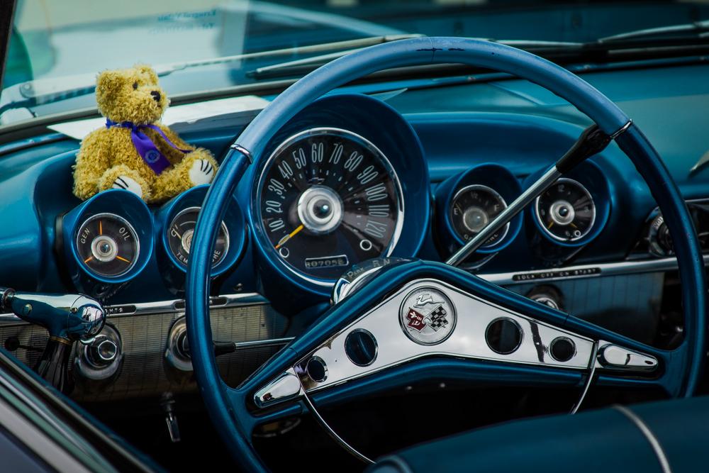 кокпит с медведем