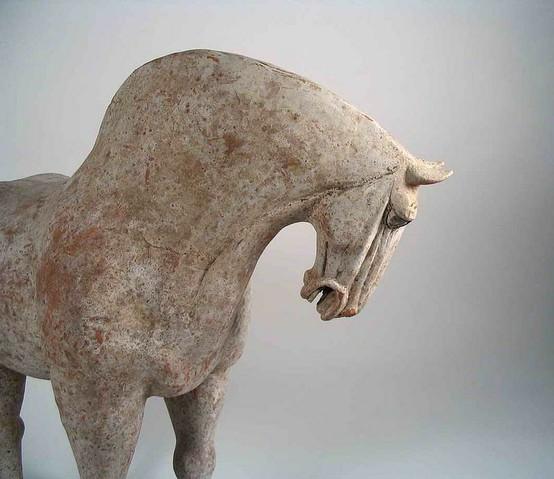 династия тан 7-8 век до н э