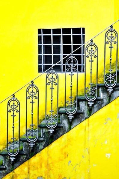 желтое флорентийское