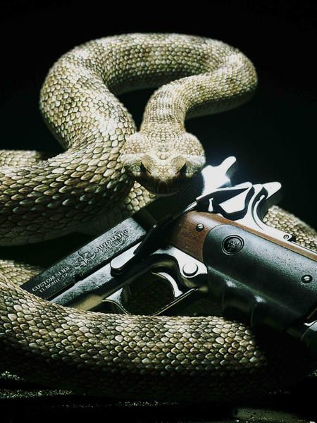 со змеёй