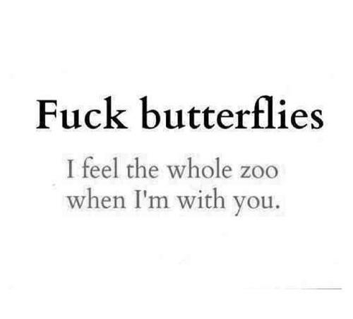 на хер бабочек
