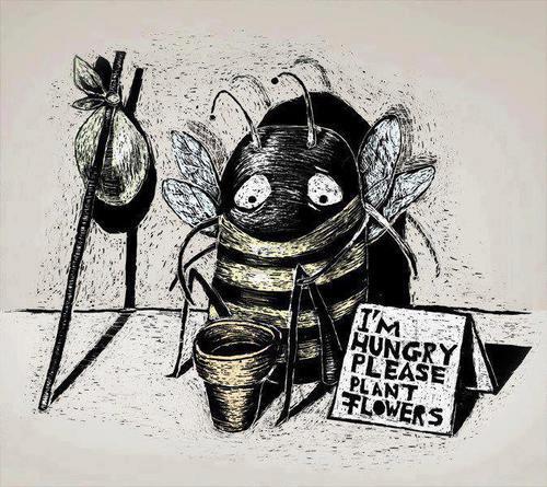 пчёлам нужны цветы