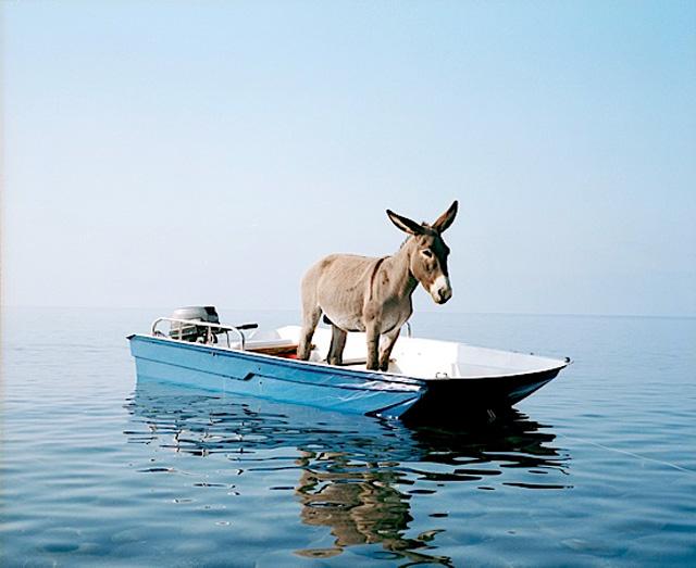 куда ж нам плыть