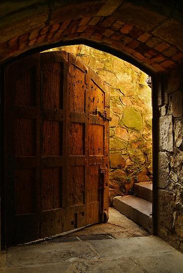 дверь колёсная
