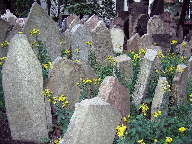 коллекция кладбищ