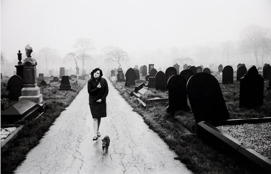кладбище и дама с котом 1963