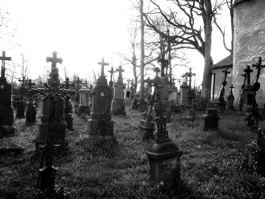 кладбище многокрестное