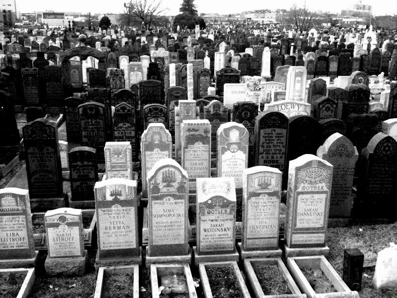 еврейск кладб
