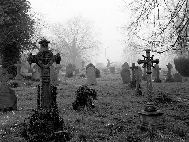 кладбище с крестами