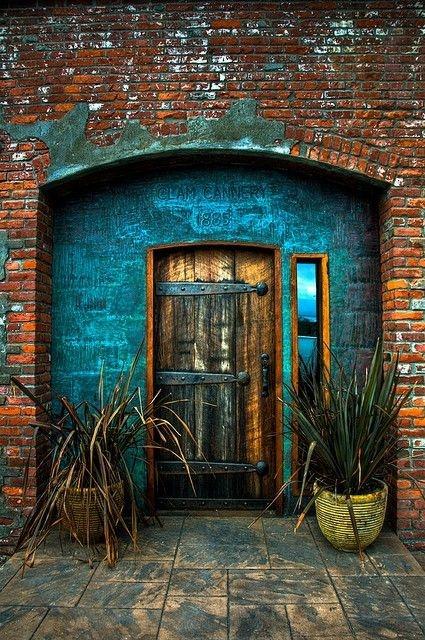 дверь и агавы