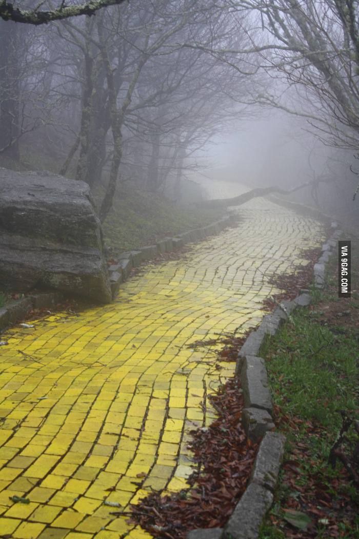 Yellow Brick Road from an abandoned Wizard of Oz park in North Carolina