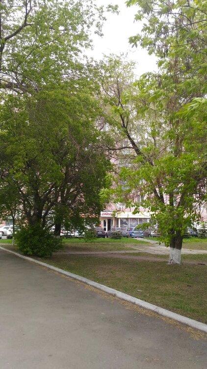 Деревья за много лет разрослись и дома практически  не видно и скверик немного уставший((