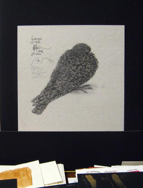 Умирающий голубь A 013b