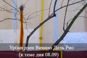 Урбан Дзен