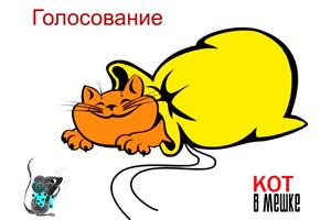кот в мешке1