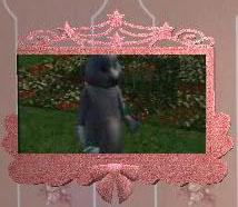 PrincessTV-TNW