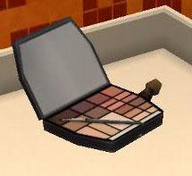 MakeupCase-tnw