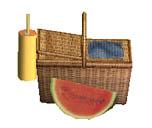 picnic-jennisims