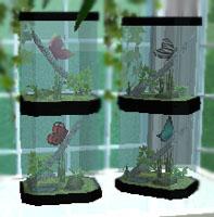 butterfly terrariums - delonariel