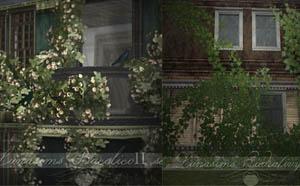lunasims-flowersivy-maron