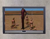 TV-TNW