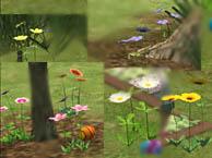 wildflowers - delonariel