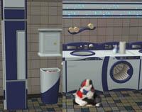 laundromat - mistyfluff