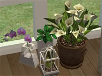 clutteraholic-plants