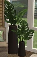 ultralounge-fern-lmhwjs