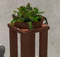 plant-TNW