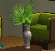 Bayside-palm-amovitamsim