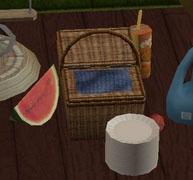 picnic-zxta