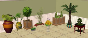 plants-amovitamsim