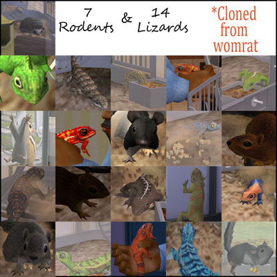 womratlizardsrodents-bienchen83