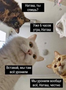 Наташа1