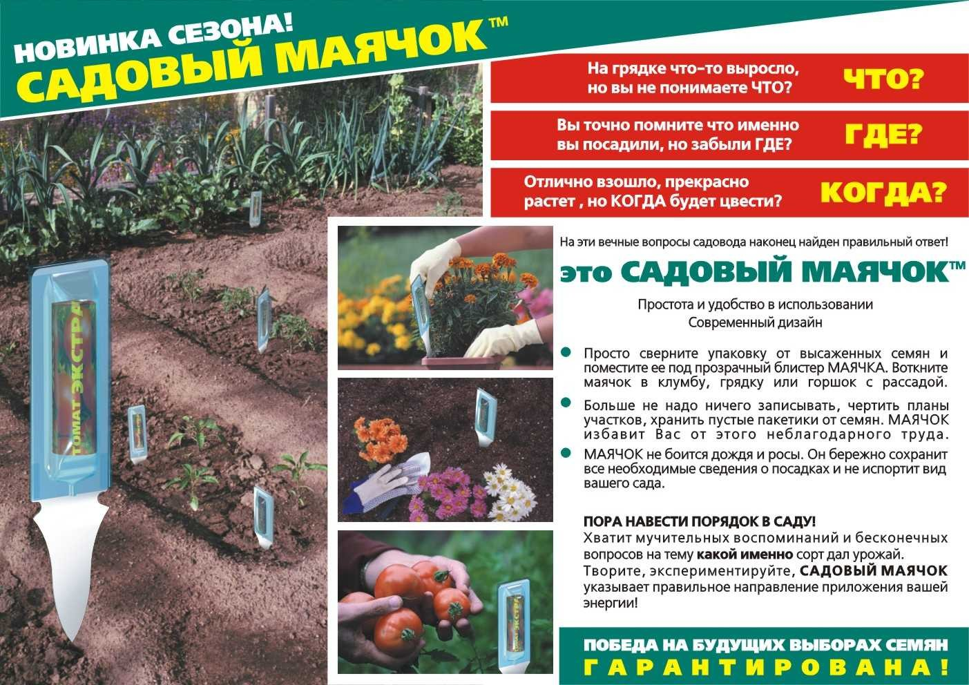 Mayachoklistovka_rus