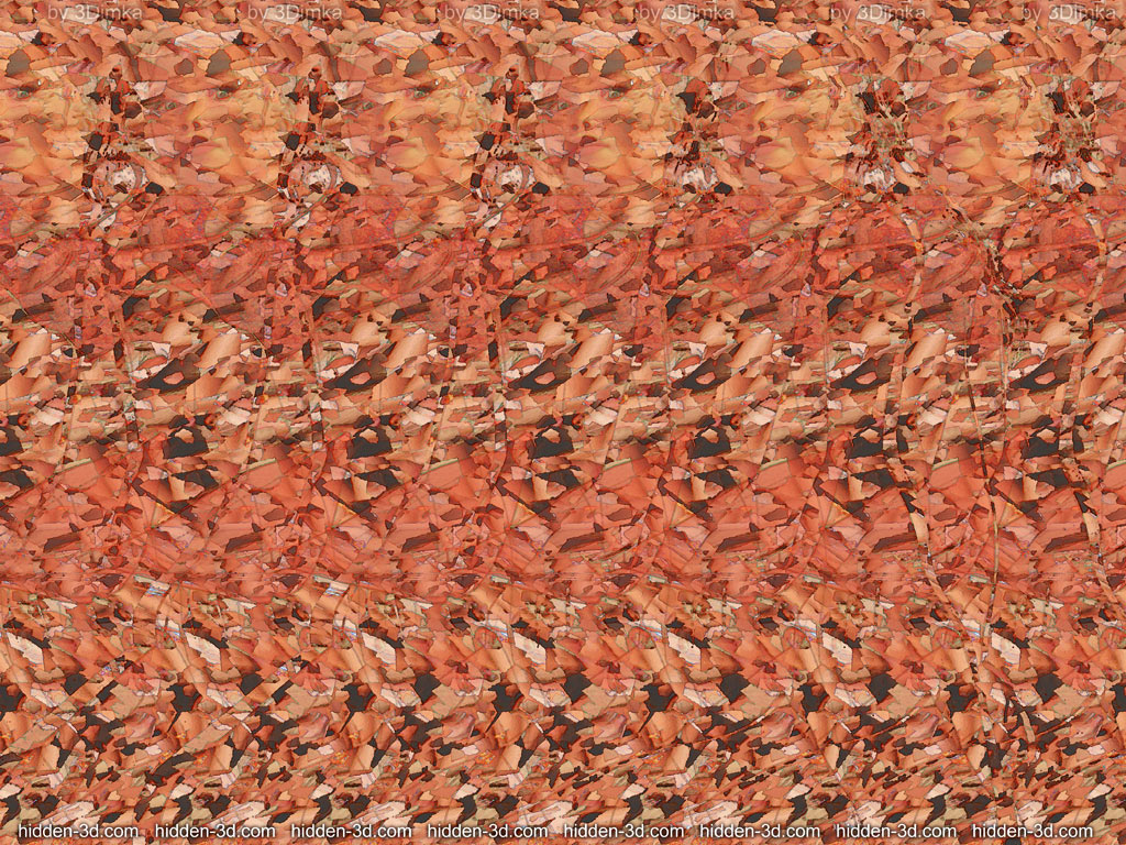 Stereogram two images nude something is