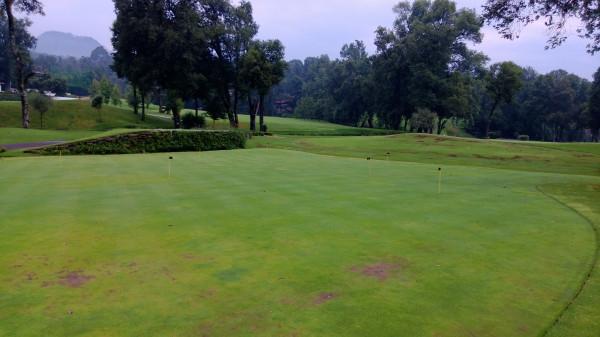 поле_гольф