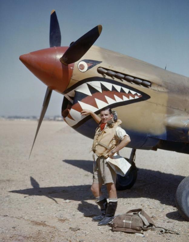 Пустынные акулы