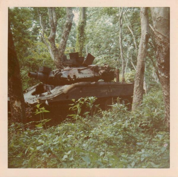 В джунглях Индокитая