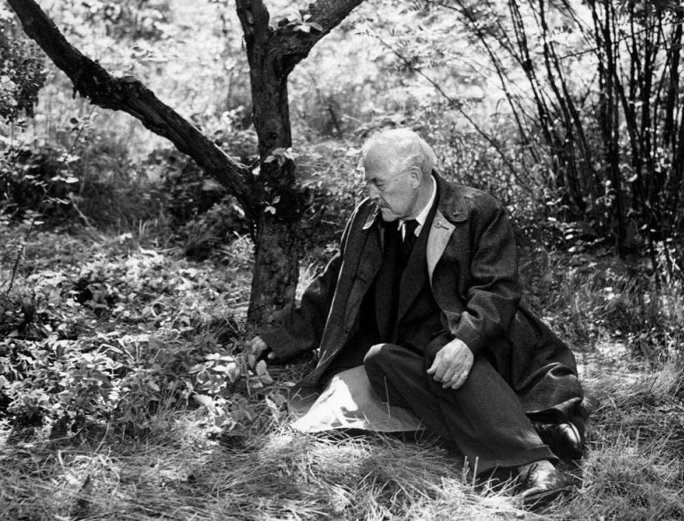 Земляничная поляна — Smultronstallet (Ингмар Бергман, 1957)