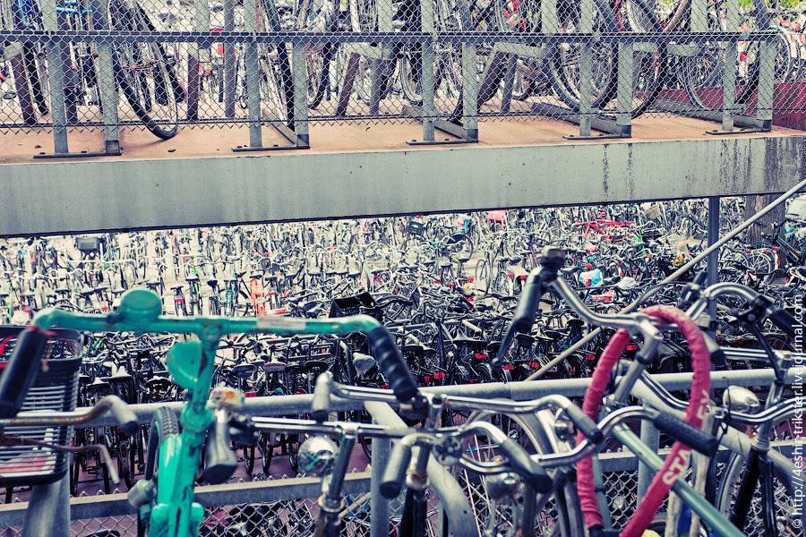 Амстердам, день второй