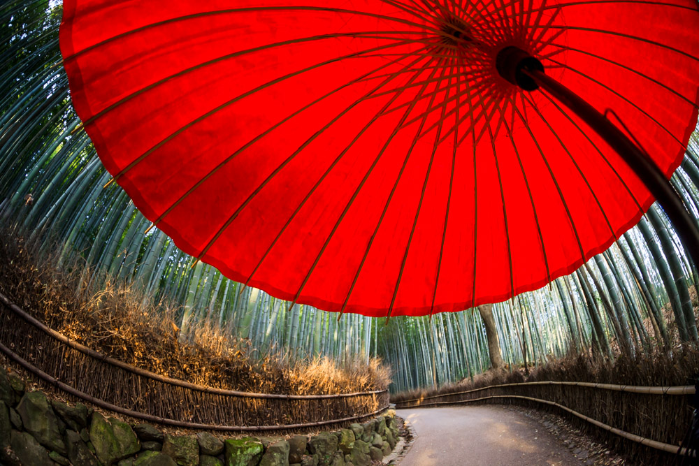 Japan-Apr2014 Web-4185