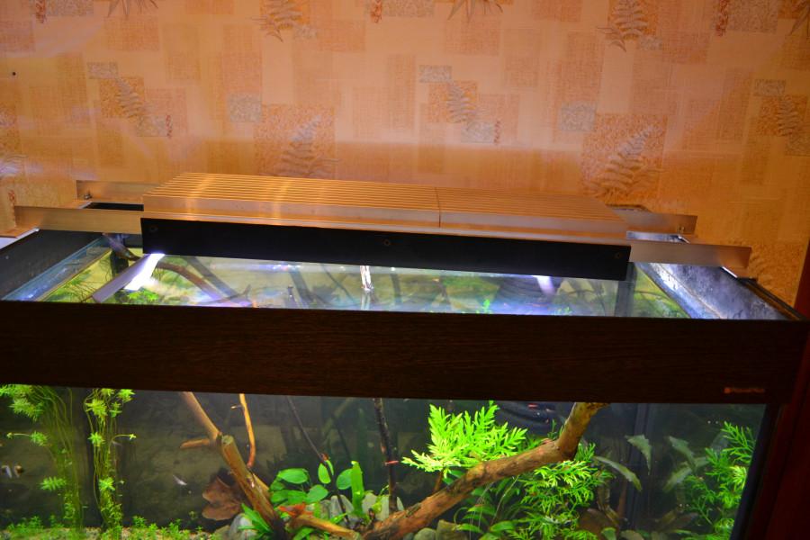 Аквариум освещение для растений своими руками 34