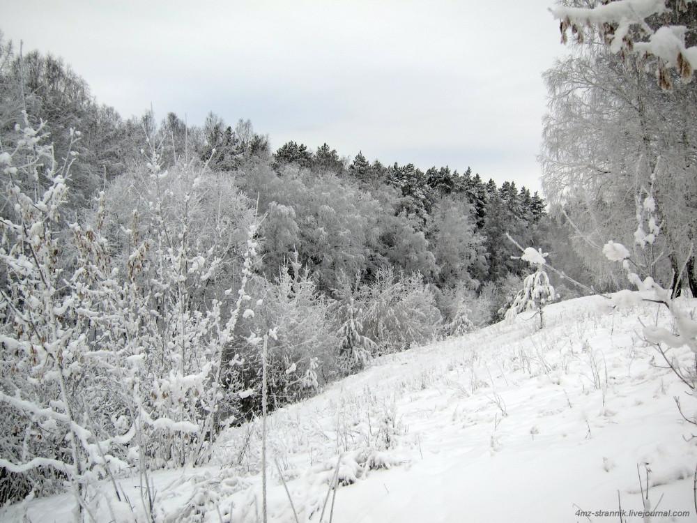 лыжи 02.jpg