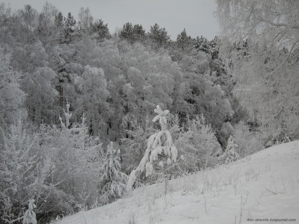 лыжи 03.jpg