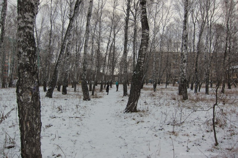 зима 01.jpg