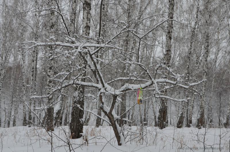 зима пришла 02.jpg